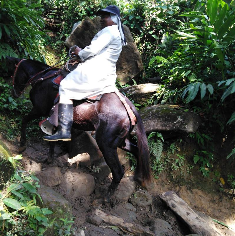 Caminos de Misión Provincia de Bogotá